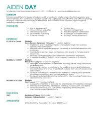 online resume livecareer live resume examples  resume ideas     resume template