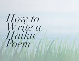Image result for haiku