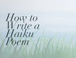 Image result for haiku