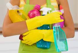 Image result for house cleaning pictures free