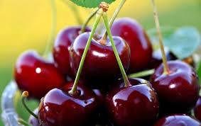 <b>Вишня</b> при подагре: влияние ягоды на здоровье - Официальный ...