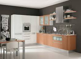 metal kitchen cabinets contemporary design
