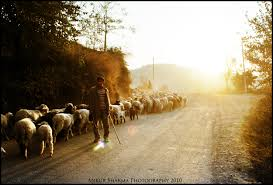 the higher wider more blazing beckoning pull crossroads santiago the alchemist shepherd imagery