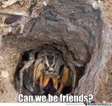 Big Spider by abdelkader - Meme Center via Relatably.com