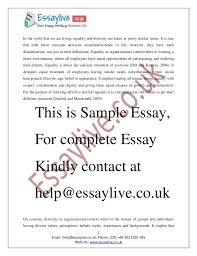 it implies that 2 diversity essay examples