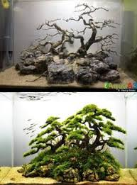 8 Best Aquarium <b>pump</b> images | Aquarium, Aquarium fish, Diy ...