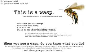 Best five noted quotes about wasp photograph German | WishesTrumpet via Relatably.com