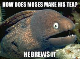 JimmyFungus.com: Bad Joke Eel: The VERY BEST of the Bad Joke Eel ... via Relatably.com