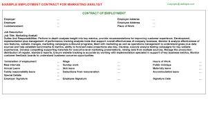 analyst job titlemarketing analyst employment contract