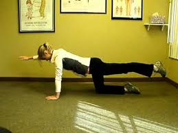 Image result for bird dog exercise