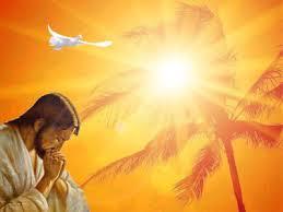 Resultado de imagem para imagens espirito santo