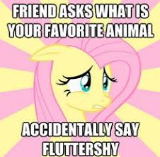 My Little Brony - Page 2 - Friendship is Magic - my little pony ... via Relatably.com
