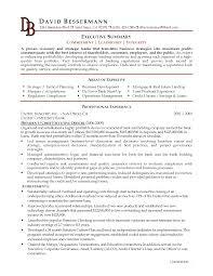 writing resume summary writing resume summary 2335