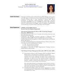 resume summary examples sample resume professional summary examples kqnwaqga example of professional summary for resume