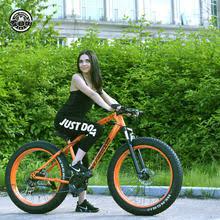 fat bike rear