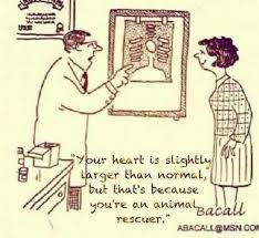 Big hearted rescue folks... | Cat Rescue Memes | Pinterest | Folk via Relatably.com