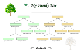 family tree charts   create your tree on family tree builder blank family tree diagram