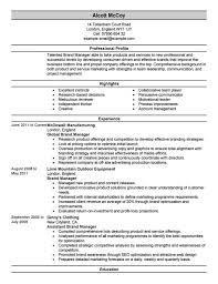 marketing director cv uk marketing director resume account marketing summary for resume