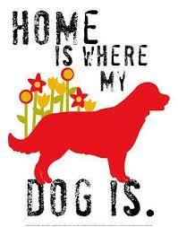 Πού είναι το σπίτι μου;