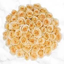 <b>Roses</b> | Costco