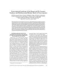 Transcriptional <b>landscape</b> of the human and fly genomes: Nonlinear ...