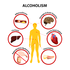 the truth about what alcohol does to your body com the amount of damage alcohol causes