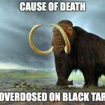 wooly mammoth Meme Generator - Imgflip via Relatably.com
