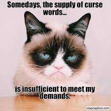 Some days, the supply of curse words is insufficient to meet ... via Relatably.com