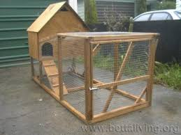 DIY Chicken Coop Plans Search   Chicken Coop How toDiy Chicken Coop Plans