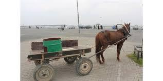 at arabası ile ilgili görsel sonucu