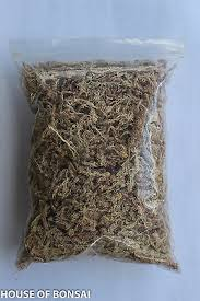 "sphagnum moss for air-layering,<b>peat</b> muck, moss ball, 10"" x 12 ..."