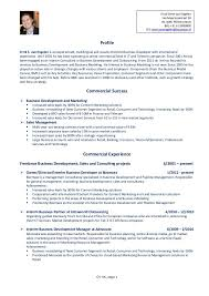 Professional Resume Help Nyc Professional Resume Writers Military Resume Writers Professional Templates And Only A Professional