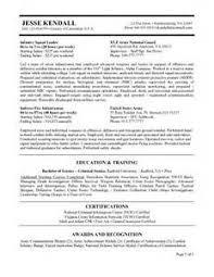 Resume Service Manager   Finance Executive Resume Sample