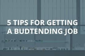 tips for getting a budtending job thcu insider