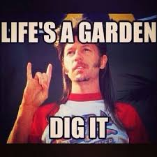 Love Joe Dirt! | Movies | Pinterest via Relatably.com