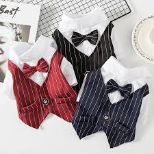 Cats and dogs pet clothes spring and <b>summer</b> suits cats <b>thin section</b> ...