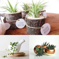 small plant for office desk confortable for your interior home inspiration with small plant for office adorable home office desk