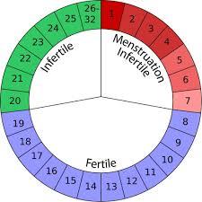 natural birth control options suggestions mama natural effectiveness rate 95% birth control for natural mamas natural family planning calendar based method