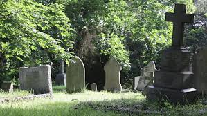 Image result for old graveyard crosses