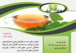 Image result for بادرنجبویه