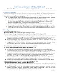 strategic manager resume s management lewesmr sample resume of strategic manager resume