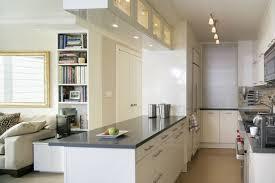 gallery kitchen design pleasing