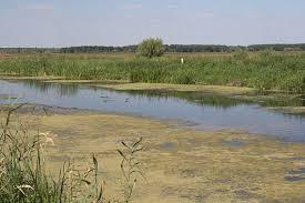 Trubizh River