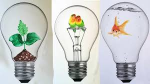 Image result for pics idea bulbs