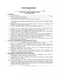 the sdira llc operating agreement boilerplate for your client s 372 3 2 page 1