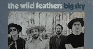 The <b>Wild Feathers</b> Official Website