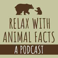 Relax With Animal Facts