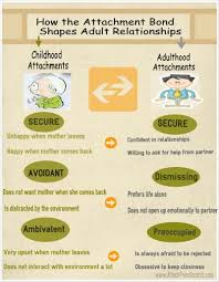 images about kehityspsykologia on pinterest   attachment    attachment theory