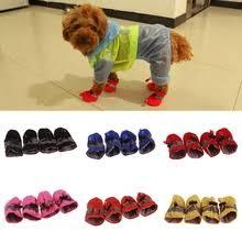 <b>Dog Shoes</b>