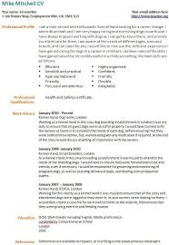 cv examples for childcare   what to include on your resumecv examples for childcare cv template for a childcare worker randstadcouk career change cv example template